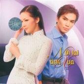 Noi Lai Tinh Xua van Various