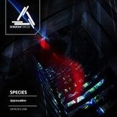 Spacewalker by Various Artists