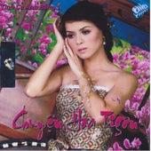 Tinh Khuc Anh Bang 1 - Chuyen Hoa Tigon van Various