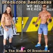 Breakcore Beefcakes by Otto Von Schirach