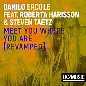 Meet You Where You Are von Danilo Ercole
