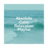 Absolute calm relaxation playlist de Various Artists