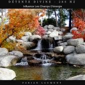 Détente divine - 285 Hz (Influence les champs d'énergie) von Fabian Laumont