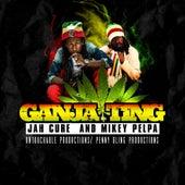 Ganja Ting by Jah Cure