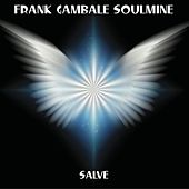 Salve by Frank Gambale
