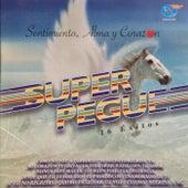 Sentimiento, Alma y Corazón, 16 Éxitos de Super Pegue