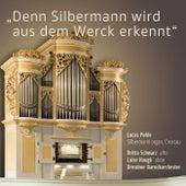 Denn Silbermann wir aus dem Werck erkennt de Various Artists