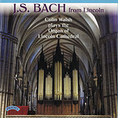 J.S. Bach from Lincoln by Colin Walsh