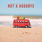 Not a Goodbye (Voost Remix) di Voost
