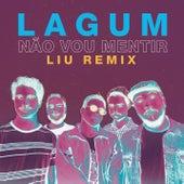 Não Vou Mentir (Liu Remix) de Liu'