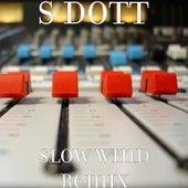 Slow Wind (Remix) de S. Dott