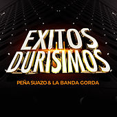 Exitos Durisimos by La Banda Gorda
