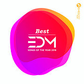 Best EDM Songs of the Year 2018 von Various Artists