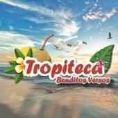 Tropiteca / Benditos Versos de Various Artists