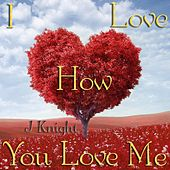 I Love How You Love Me von J.Knight