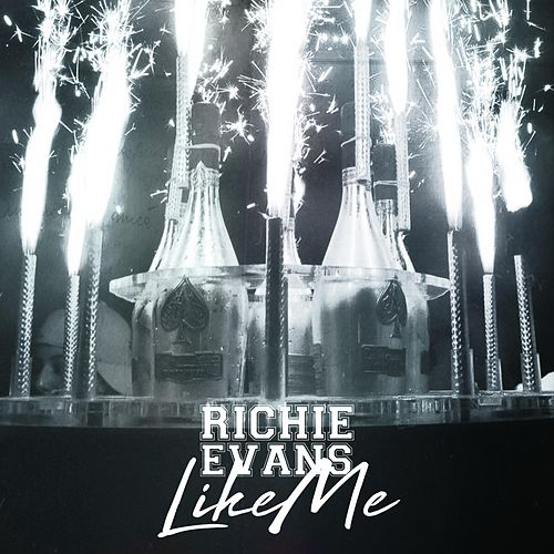Like Me by Richie Evans