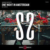 One Night In Amsterdam - Single by Various Artists