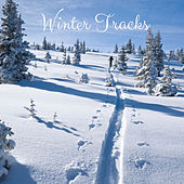 Winter Tracks by Nature Sounds (1)