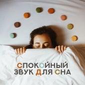 Спокойный звук для сна - Успокаивающая инструментальная музыка с природой звучит, глубокий сон, сладкие сны, холодный вечер by Оазис глубокой сна