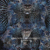 Brazilian Shamans 2 - EP de Various Artists