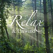 Relax & Unwind de Various Artists