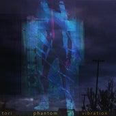 Phantom Vibration de tori