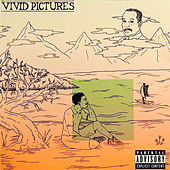 Vivid Pictures de Dizz