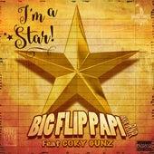 I'm a Star (feat. Cory Gunz) von Big Flip Papi