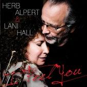 I Feel You by Herb Alpert