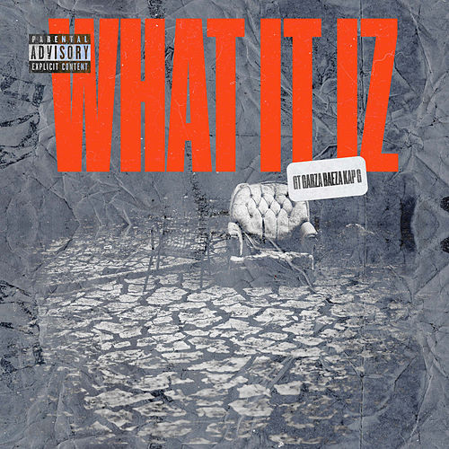 What It Iz by Baeza