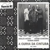 A Curva da Cintura by Edgard Scandurra Toumani Diabaté