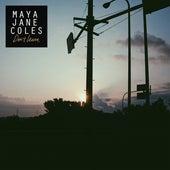 Don't Leave de Maya Jane Coles
