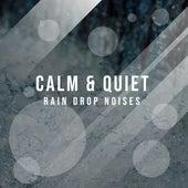 #10 Calm & Quiet Rain Drop Noises by Thunderstorms
