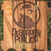 Desorden Orgánico: Rarezas Acústicas, Vol. 1 de Desorden Público