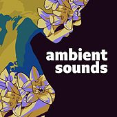 Ambient Sounds de Various Artists