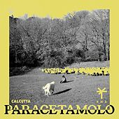 Paracetamolo (TY1 Remix) by Calcutta