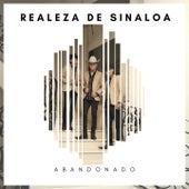 Abandonado de Realeza De Sinaloa