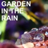 Garden in the Rain de Various Artists