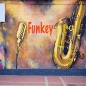 Funkey di Sonox