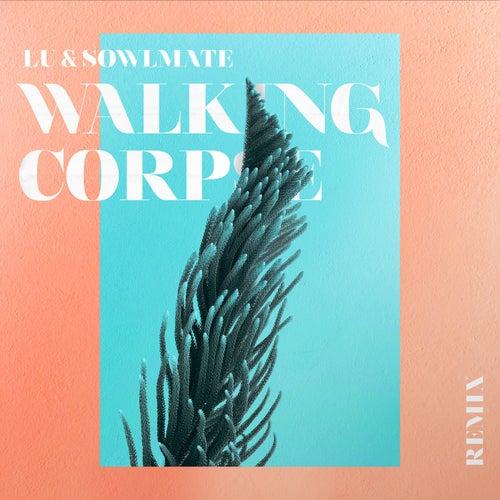 Walking Corpse (Schräglage Remix) by Lu