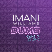 Dumb (DJ Zinc Remix) by Imani Williams