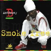 Smoke Free by Anthony B