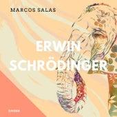 Erwin Schrödinger di Marcos Salas
