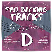 Pro Backing Tracks D, Vol.18 by Pop Music Workshop