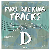 Pro Backing Tracks D, Vol.25 by Pop Music Workshop