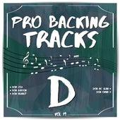 Pro Backing Tracks D, Vol.19 by Pop Music Workshop