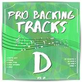 Pro Backing Tracks D, Vol.23 by Pop Music Workshop