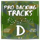 Pro Backing Tracks D, Vol.20 by Pop Music Workshop