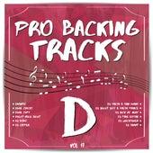 Pro Backing Tracks D, Vol.17 by Pop Music Workshop