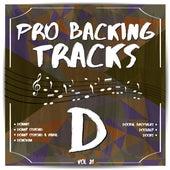 Pro Backing Tracks D, Vol.21 by Pop Music Workshop